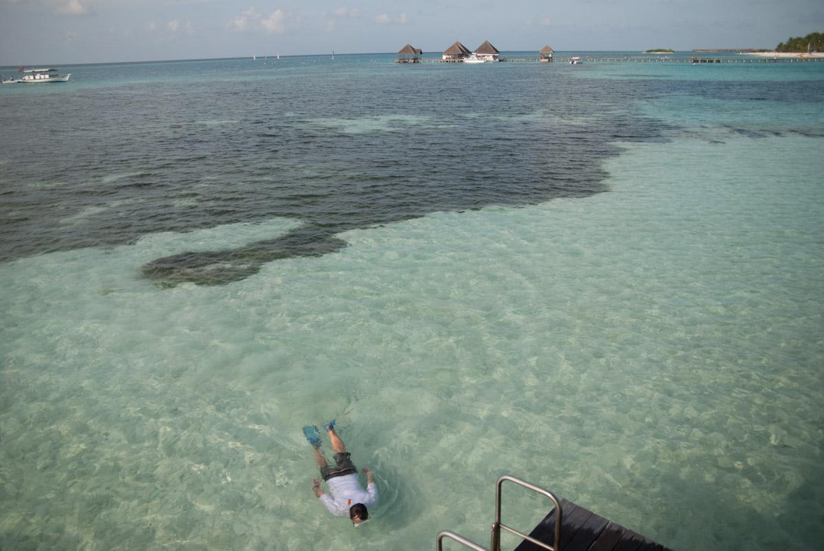 Nager aux paradis