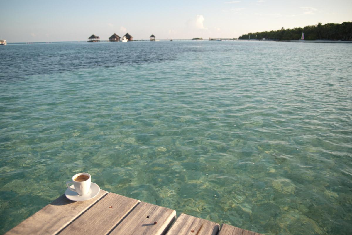 Un café aux Paradis